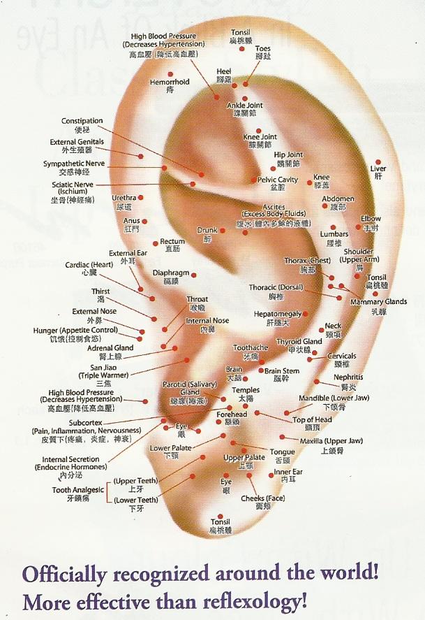Auriculotherapy and Para-Tan | Para-Tan Sound Healing Ear Piercings Names